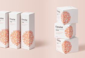 Appeal Aesthetics for Cosmetics with Customized Packaging
